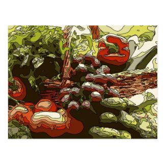 Los granjeros comercializan las frutas y verduras postal