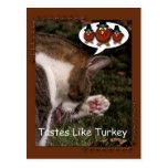 Los gustos tienen gusto de Turquía Postales