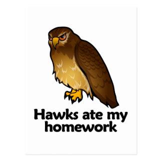 Los halcones comieron mi preparación postales