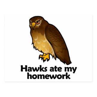 Los halcones comieron mi preparación tarjeta postal