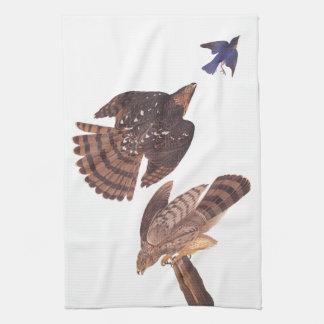 Los halcones de Stanley de Audubon que cazan un Toallas De Cocina