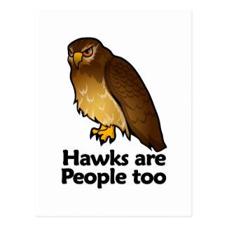 Los halcones son gente también tarjeta postal