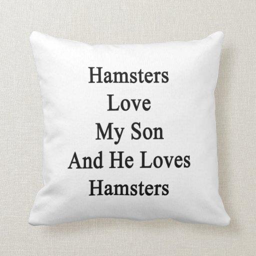 Los hámsteres aman a mi hijo y él ama hámsteres cojin