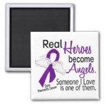 Los héroes reales hacen cáncer pancreático de los  imanes de nevera