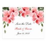 Los hibiscos rosados ahorran la postal de la fecha