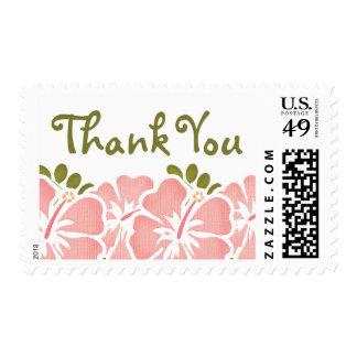 Los hibiscos rosados le agradecen los sellos