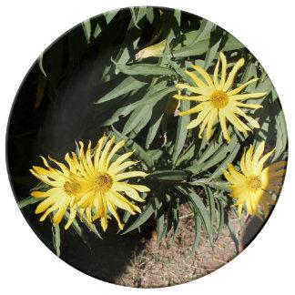 """Los hierbas del en MI de Flores """"florecen en mis Platos De Cerámica"""