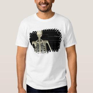 Los huesos del cuerpo superior poleras