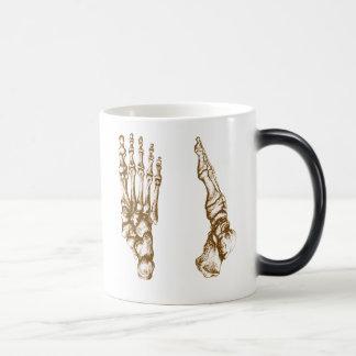 Los huesos del pie humano taza mágica
