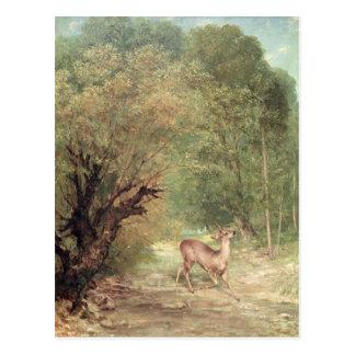 Los Hueva-Ciervos cazados en la alarma, primavera, Postal