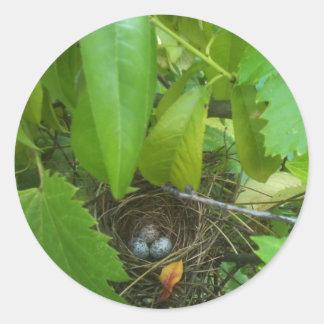 ¿Los huevos del pájaro de la conjetura que? Pegatina Redonda
