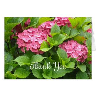 Los Hydrangeas de color rosa oscuro le agradecen Felicitación