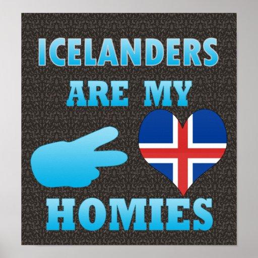 Los indios son mi Homies Póster