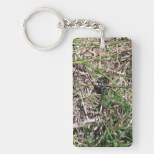 Los insectos/los arácnidos negros del barranco de  llaveros
