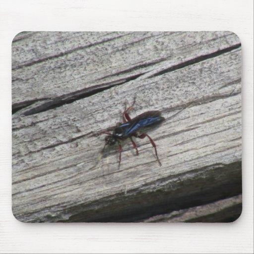 Los insectos/los arácnidos negros del barranco de mouse pads