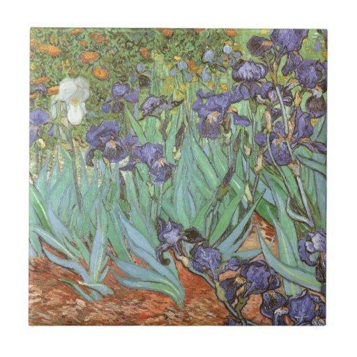 Los iris de Vincent van Gogh, vintage florecen Azulejo Cuadrado Pequeño