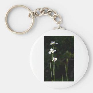 Los iris lo tienen llavero redondo tipo pin