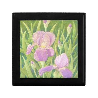 Los iris, Wisley cultivan un huerto pequeña caja Joyero Cuadrado Pequeño