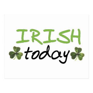 ¡Los irlandeses diseñan hoy! Tarjeta Postal