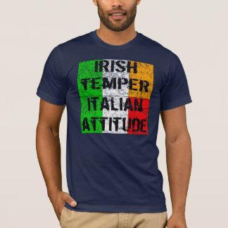 Los irlandeses moderan la camiseta italiana de la