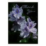 Los jacintos de agua le agradecen tarjeta de nota