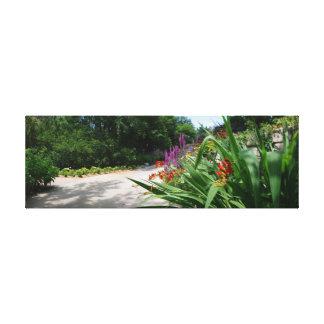 Los jardines de Botanica sombrearon la trayectoria Lienzo Envuelto Para Galerias
