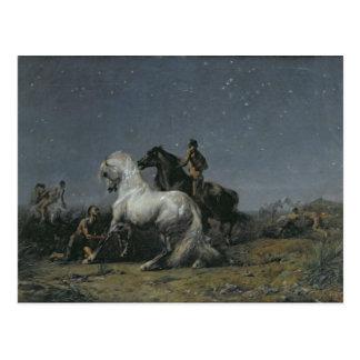 Los ladrones del caballo, siglo XIX Tarjeta Postal