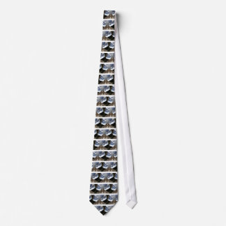 """Los lazos, """"energía y persistencia conquistan toda corbatas personalizadas"""