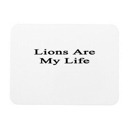 Los leones son mi vida imán flexible