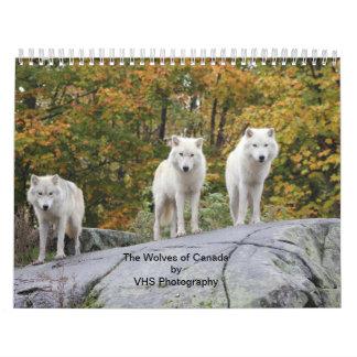 Los lobos de Canadá (calendario) Calendarios
