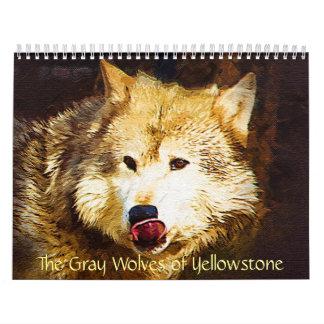 Los lobos grises de Yellowstone Calendario De Pared