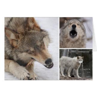 Los lobos - tarjeta de felicitación - esconden den