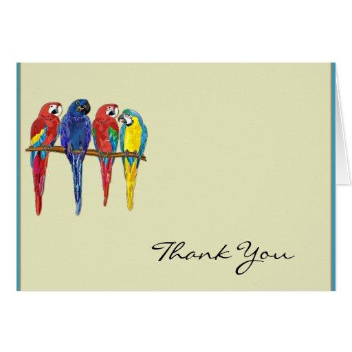Los loros tropicales le agradecen felicitacion