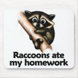 Los mapaches comieron mi preparación tapete de ratón