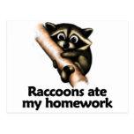 Los mapaches comieron mi preparación tarjeta postal