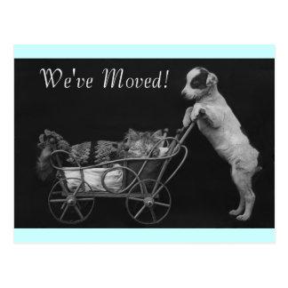 Los mascotas dulces del vintage de la postal hemos