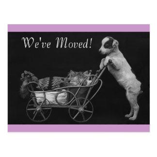 Los mascotas lindos del vintage de la postal hemos