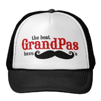 Los mejores abuelos tienen gorra de los bigotes