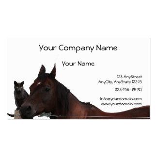 Los mejores amigos gato y caballo abrazan para tarjetas de visita