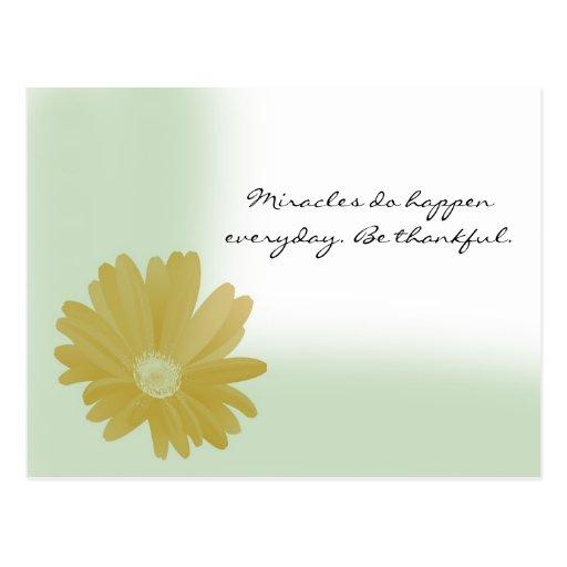 Los milagros suceden postal diaria del girasol