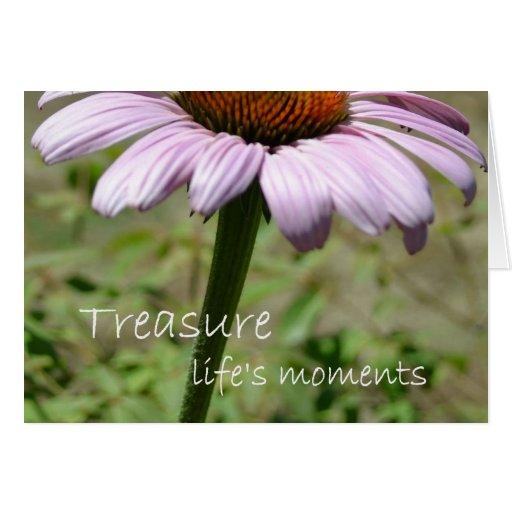 Los momentos de la vida del tesoro tarjetón