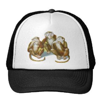 Los monos cómicos oyen See no hacer ningún mal Gorros
