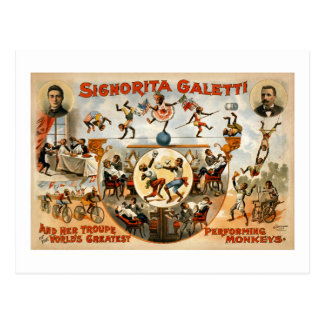 Los monos de ejecución más grandes 1892 del mundo postales