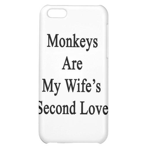 Los monos son el amor de mi esposa en segundo luga