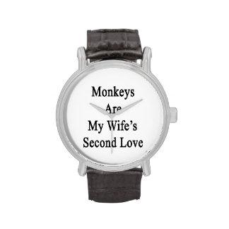 Los monos son el amor de mi esposa en segundo