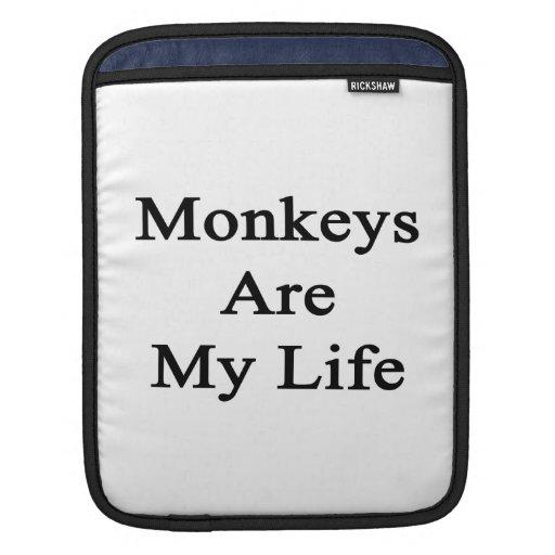 Los monos son mi vida manga de iPad