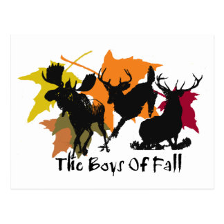 Los muchachos de la caída postales