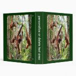 """Los muchachos en la capilla de la selva tropical carpeta 1"""""""