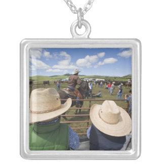 Los muchachos jovenes admiten el rancho 2007 de collar plateado