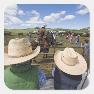 Los muchachos jovenes admiten el rancho 2007 de Hu Pegatinas Cuadradas Personalizadas